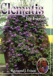 Clematis For Everyone - Raymond J Evison