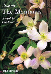 Clematis The Montanas - John Howells