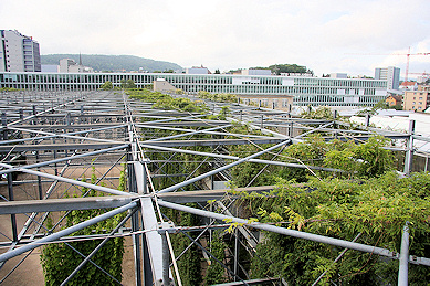 MFO Park Vertical Garden - view from the top