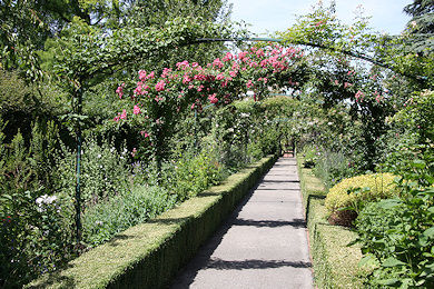 Rose arches and herbacious borders