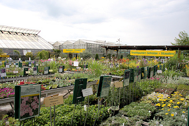 Main plant sales area at Garden Centre Ernst Meier
