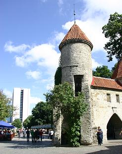 Tower in the old city walls, Tallinn
