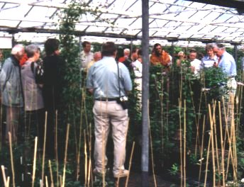 I.Cl.S. Members being shown round Guernsey Clematis Nursery by Raymond Evison, on the right