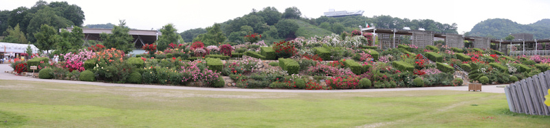 Hana Festa Memorial Park (Flower Festival Commemorative Park)