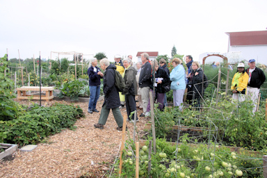 Community gardens at Luscher Farm©K.Woolfenden