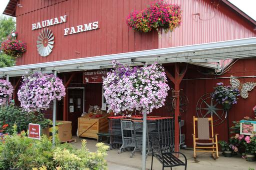 Bauman Farms are well-known for their floral displays and hanging baskets, as well as their pies!©Ken Woolfenden