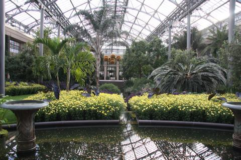 Longwood Gardens - Palm House