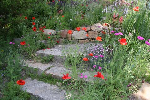 Steps down to the pond garden