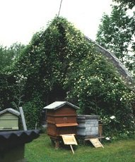 C. Paul Farges behind bee hives